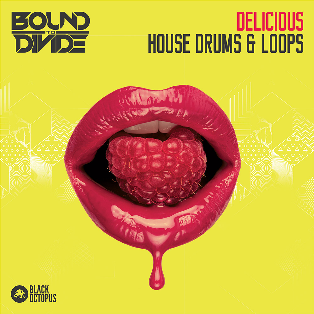 Black Octopus Sound | Delicious House Drums & Loops